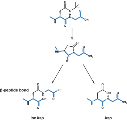 chemical systhesis Calchem synthesis (where chemistry makes a difference) company overview calchem synthesis is a contract research organization (cro) serving as an outsourcing partner for the biotech and pharmaceutical companies and research institutions.